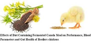 11_Fermented_canola_meal_on_performance_of_broiler